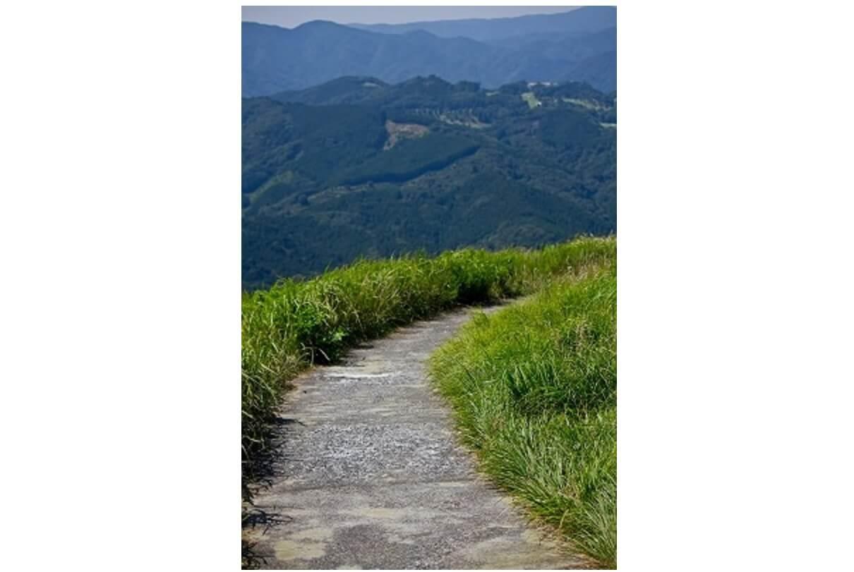 ヒザが悪くなりそうな坂道の登山道
