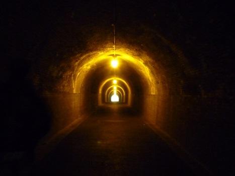 シークエンスはやともの怪談にあるお化けトンネル