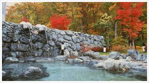 アルザ温泉の郷