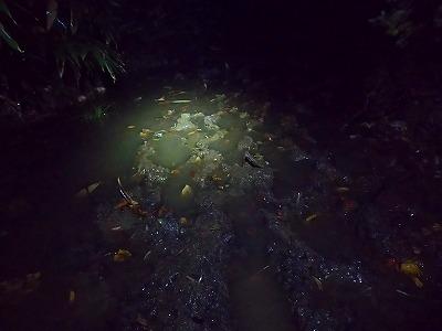 安達太良山 泥水たまり