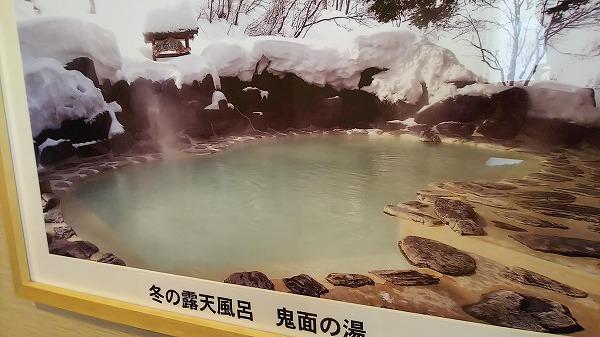 野地温泉ホテル  鬼面の湯の写真