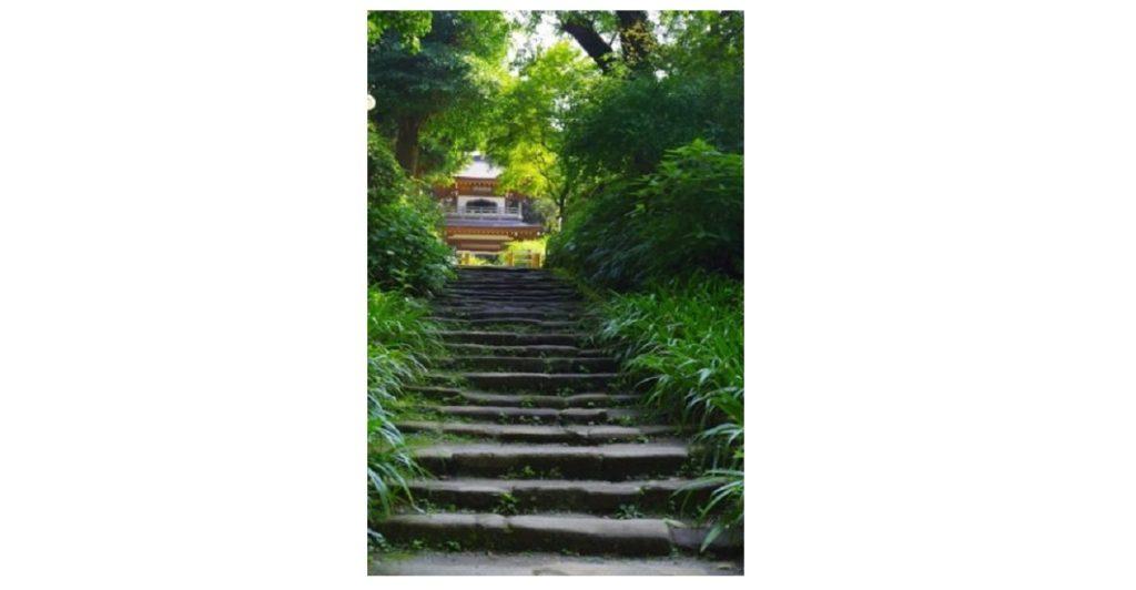 鎌倉 浄智寺
