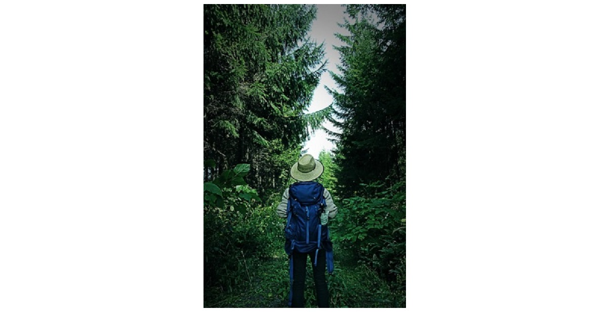 森の中にリュックの登山者