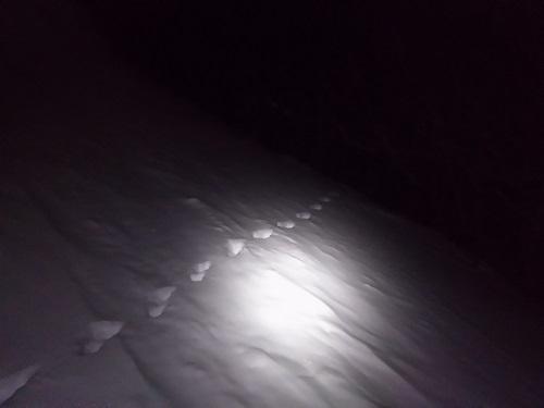 安達太良山 カモシカの足跡