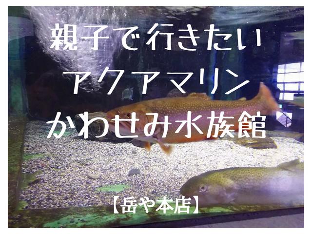 福島県 猪苗代町 アクアマリン かわせみ水族館