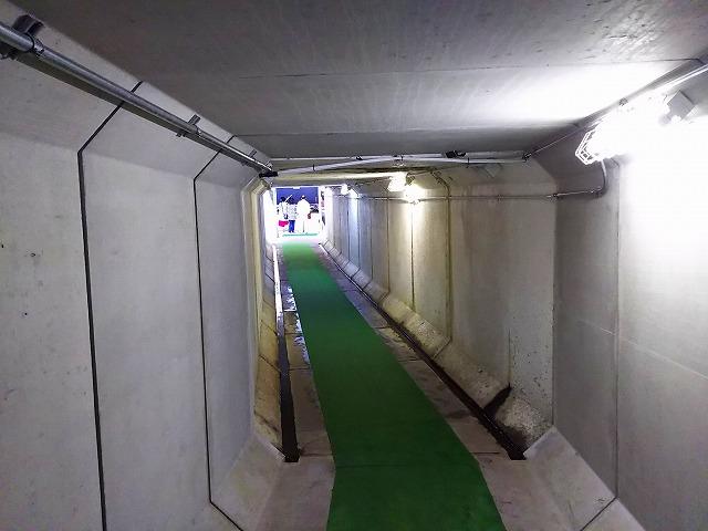 アクアマリンいなわしろカワセミ水族館 地下通路入り口 真ん中