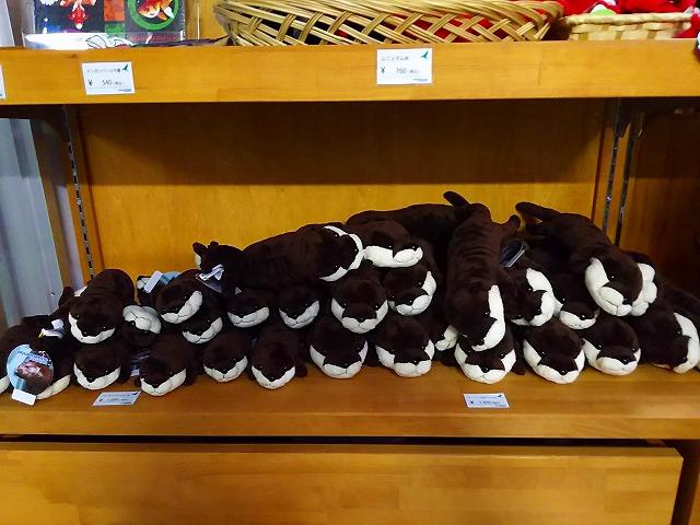 アクアマリンいなわしろカワセミ水族館内 おみやげコーナー  カワウソぬいぐるみ