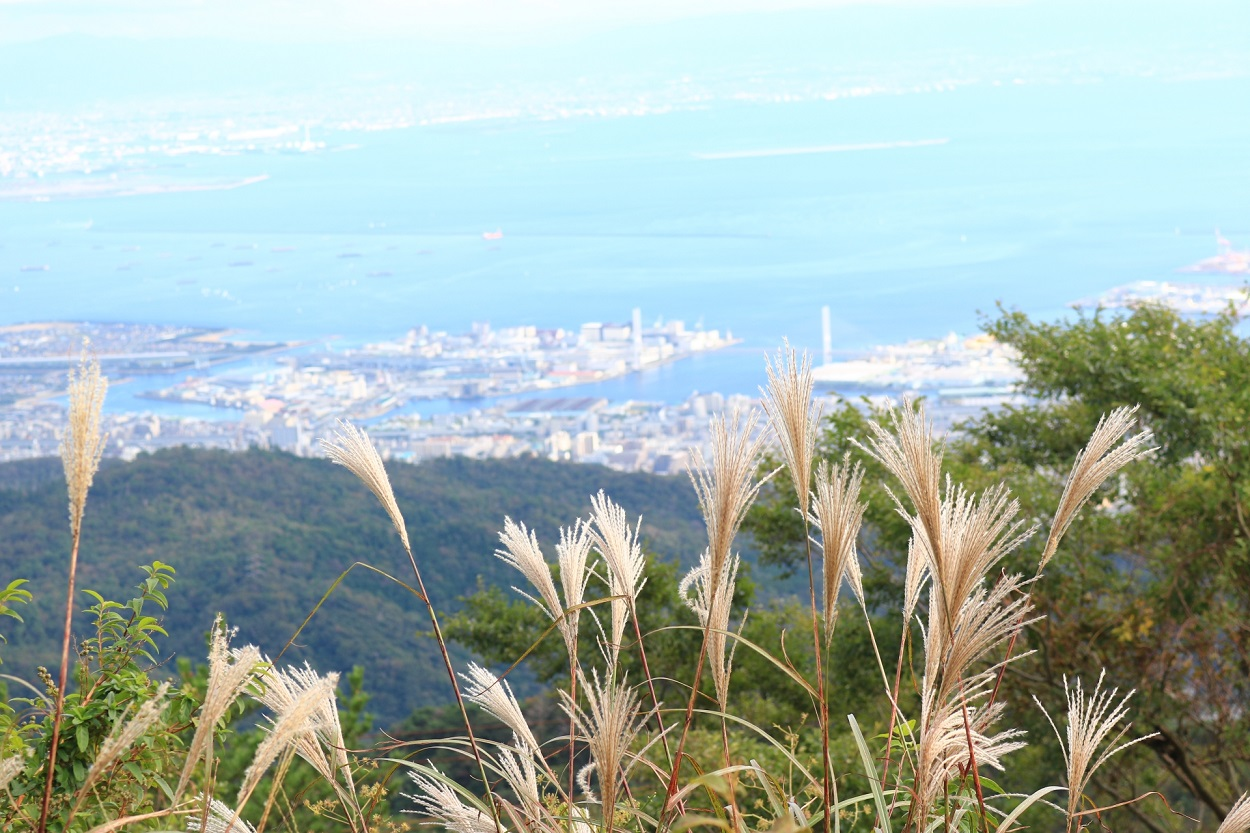六甲山登山 初心者におすすめの風景