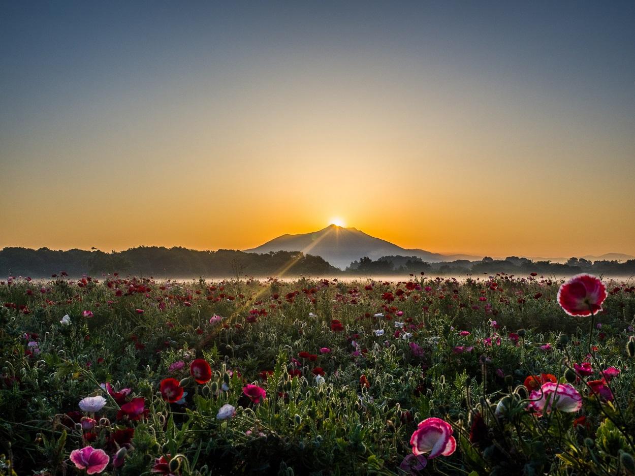 筑波山 白雲橋コースが見える風景