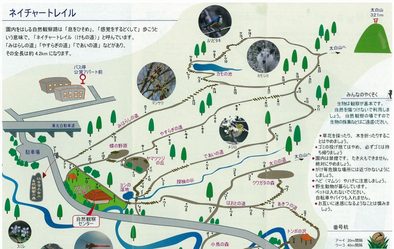 太白山 自然観察センター ルート