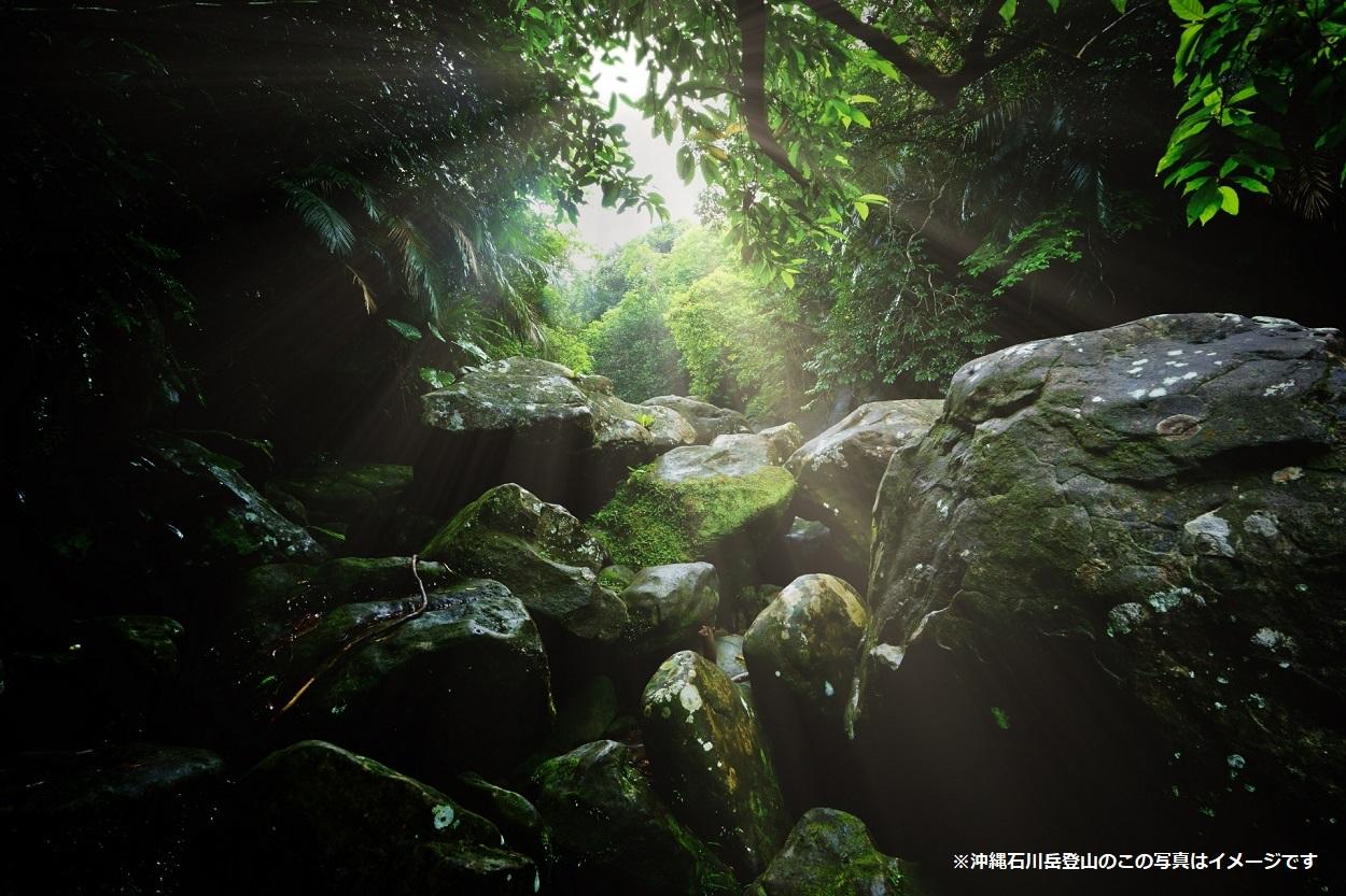 沖縄石川岳 登山のイメージ