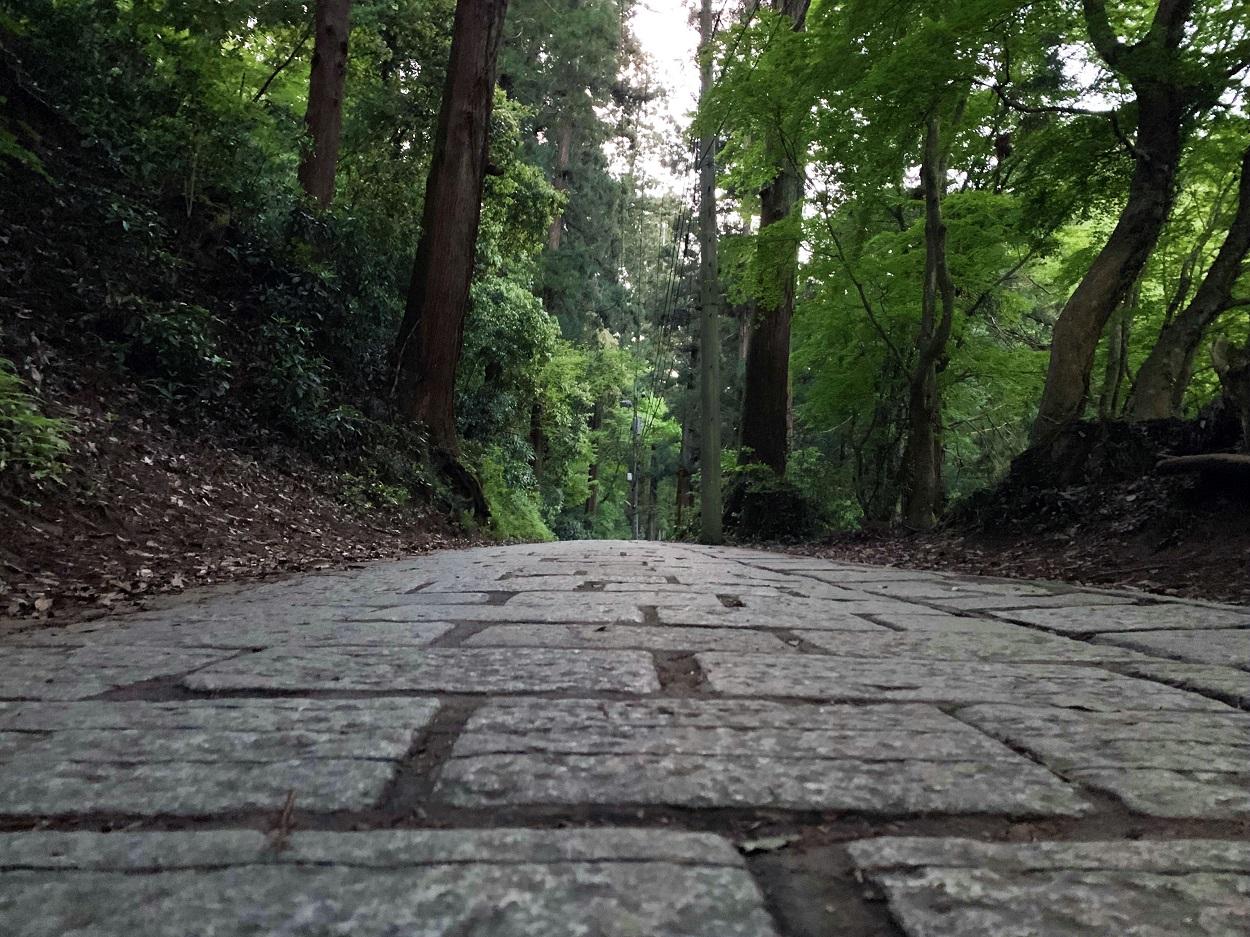 高尾山ハイキング 1号路 登山道の雰囲気