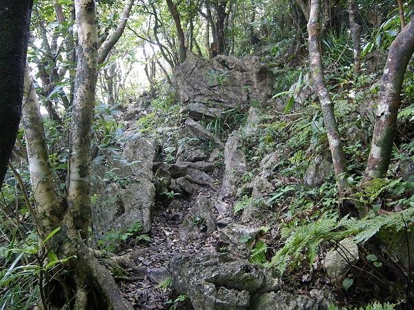 嘉津宇岳 登山 段差のある登山道