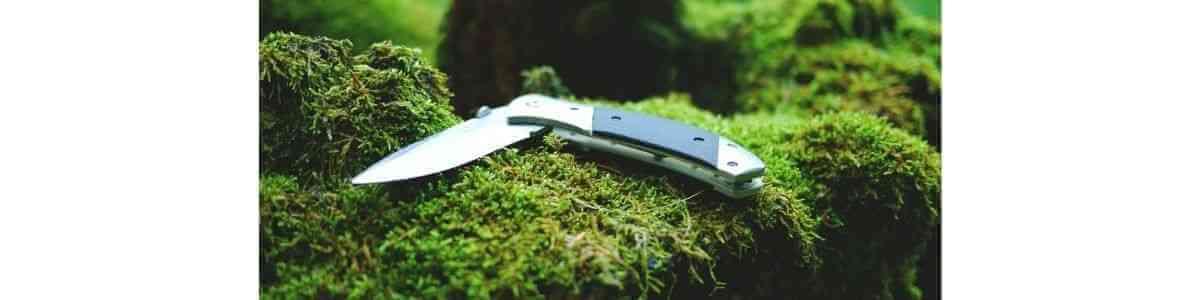 山ナイフがコケの上に乗っている