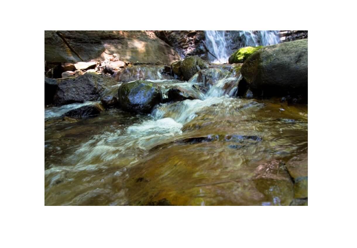 沢登りに適した渓流の画像
